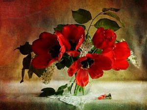 redpoppies
