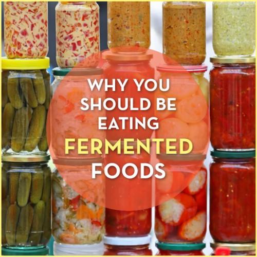 fermentedfoods