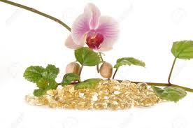 vitaminflower